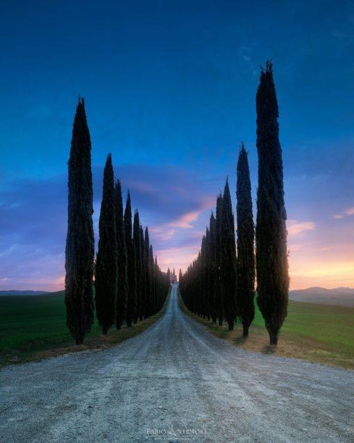 Cypress Way
